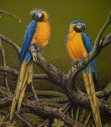 3- Guacamayos azules y amarillos