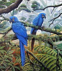 4 - Jacintos azules