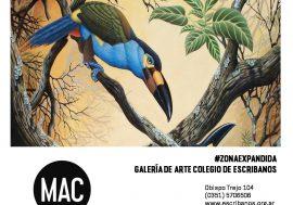 El Colegio en el Mercado de Arte Contemporáneo